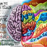Storytelling: Das Gehirn liebt Geschichten (c) Bryant Arnold - www.cartoonaday.com